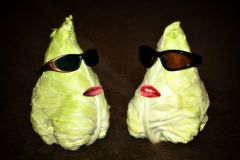 两棵圆白菜闲谈 免版税库存照片
