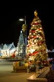 两棵圣诞树 库存图片