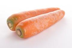 两棵大红萝卜景色 免版税图库摄影