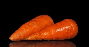 两棵新鲜的红萝卜 库存图片