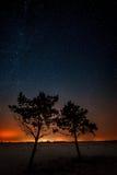 两棵树在星的背景一起增长 库存照片