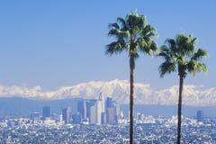 两棵棕榈树、洛杉矶和多雪的登上Baldy如被看见从鲍德温小山,洛杉矶,加利福尼亚 免版税库存照片
