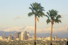 两棵棕榈树、洛杉矶和多雪的登上Baldy如被看见从鲍德温小山,洛杉矶,加利福尼亚 免版税库存图片