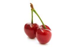 两棵樱桃侧视图 免版税库存图片