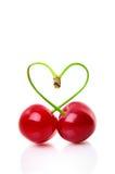 从两棵樱桃的心脏形状在白色 库存图片