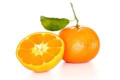 两棵橙色柑桔 免版税库存图片
