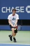 两次全垒打冠军安迪・穆雷为美国公开赛实践2013年在比利・简・金国家网球中心 免版税图库摄影