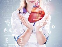 两次曝光 举行人体器官& x28的医生;heart& x29;灰色背景 库存照片