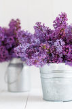 两淡紫色花花束  免版税库存图片