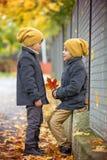 两漂亮的孩子,兄弟,握手和谈话在t 库存照片
