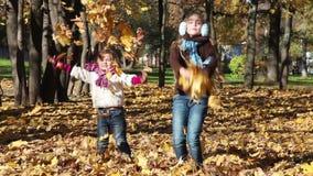 两片孩子投掷叶子 股票录像