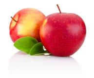两片红色苹果果子和绿色叶子在白色 免版税库存图片