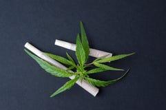 两片联接和大麻叶子 库存图片