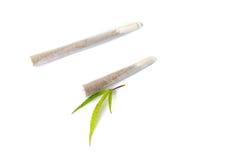 两片联接和大麻叶子 免版税库存图片