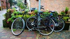两现代自行车在多雨天气的街道上停放了 库存照片