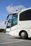 两白色教练公共汽车和夏天天空 免版税库存图片
