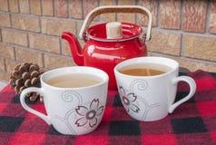 两的冬天茶 免版税库存照片