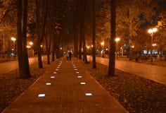 两秋天晚上步行在公园 免版税库存照片