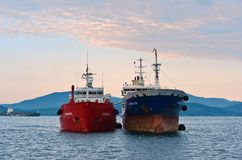 两站立肩并肩在路的罐车 不冻港海湾 东部(日本)海 15 08 2014年 免版税库存图片