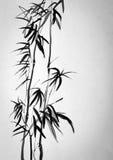 两竹子 向量例证