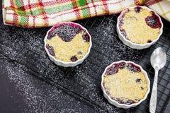 两粒自创混合莓果燕麦粉碎在白色小模子的糖粉 库存照片