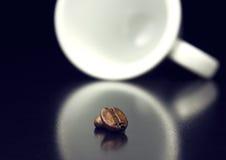 两粒豆 免版税图库摄影