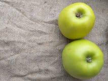 两绿色苹果秋天,背景 图库摄影