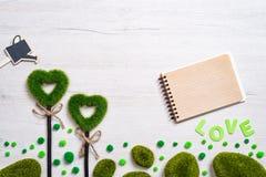 两绿色象草的心脏、笔记本和喷壶在白色木背景 库存照片