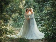两美丽的公主 免版税图库摄影