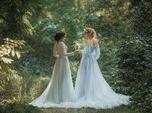 两美丽的公主 库存照片