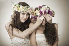 两美丽的春天神仙,滑稽,友谊标志 库存图片