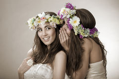 两美丽的春天神仙,滑稽,友谊标志 免版税库存照片