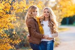 两美丽的金发碧眼的女人在秋天公园 库存图片