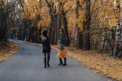 两舒适微笑的少女走在秋天公园路 免版税库存图片