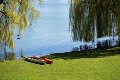 两艘皮船在草坪在la的宽岸的树下 库存照片