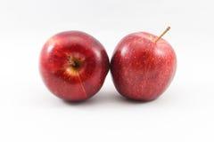 两苹果 库存图片