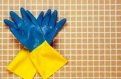 两蓝色与 免版税库存图片