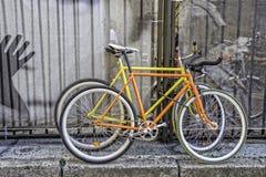 两辆固定的齿轮自行车 库存图片