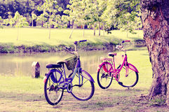 两辆自行车在公园 库存照片