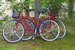 两辆自行车 库存图片