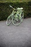 两辆绿色自行车 免版税库存照片