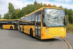 两辆黄色都市城市公共汽车 库存照片