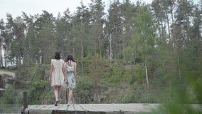两逗人喜爱的年轻女人穿站立在岩石上面和看自然的夏天礼服 俏丽的女孩走外面 影视素材
