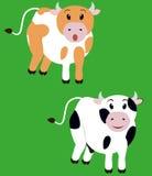 两逗人喜爱的母牛,动画片小牛 库存照片