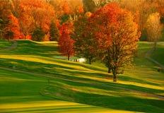 两道菜的高尔夫球日落 免版税图库摄影
