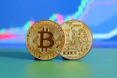 两金bitcoins说谎在背景的绿色表面上  库存图片
