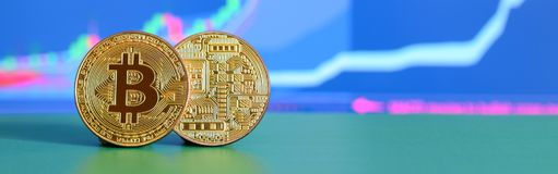 两金bitcoins说谎在背景的绿色表面上  库存照片