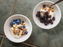 两陶瓷碗用酸奶,被碰撞的核桃,黑莓和 免版税图库摄影