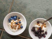 两陶瓷碗用酸奶,被碰撞的核桃,黑莓和 库存照片
