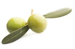 两颗绿橄榄 库存照片